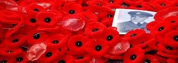 350px-poppies_by_benoit_aubry_of_ottawa259445386.jpg